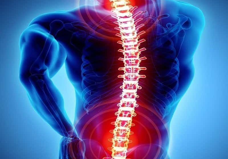 boca raton chiropractor for spine